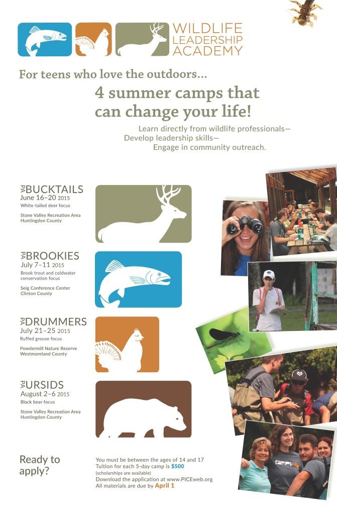 WLALFlyerPrint01.15.15 just poster