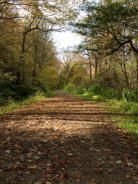 trail-photo