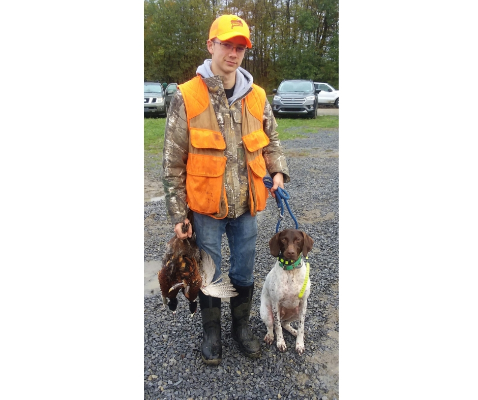 A boy wearing an orange vest and hat. In one hand he has two dead pheasants, in the other he has a brown and white dog by the leash.