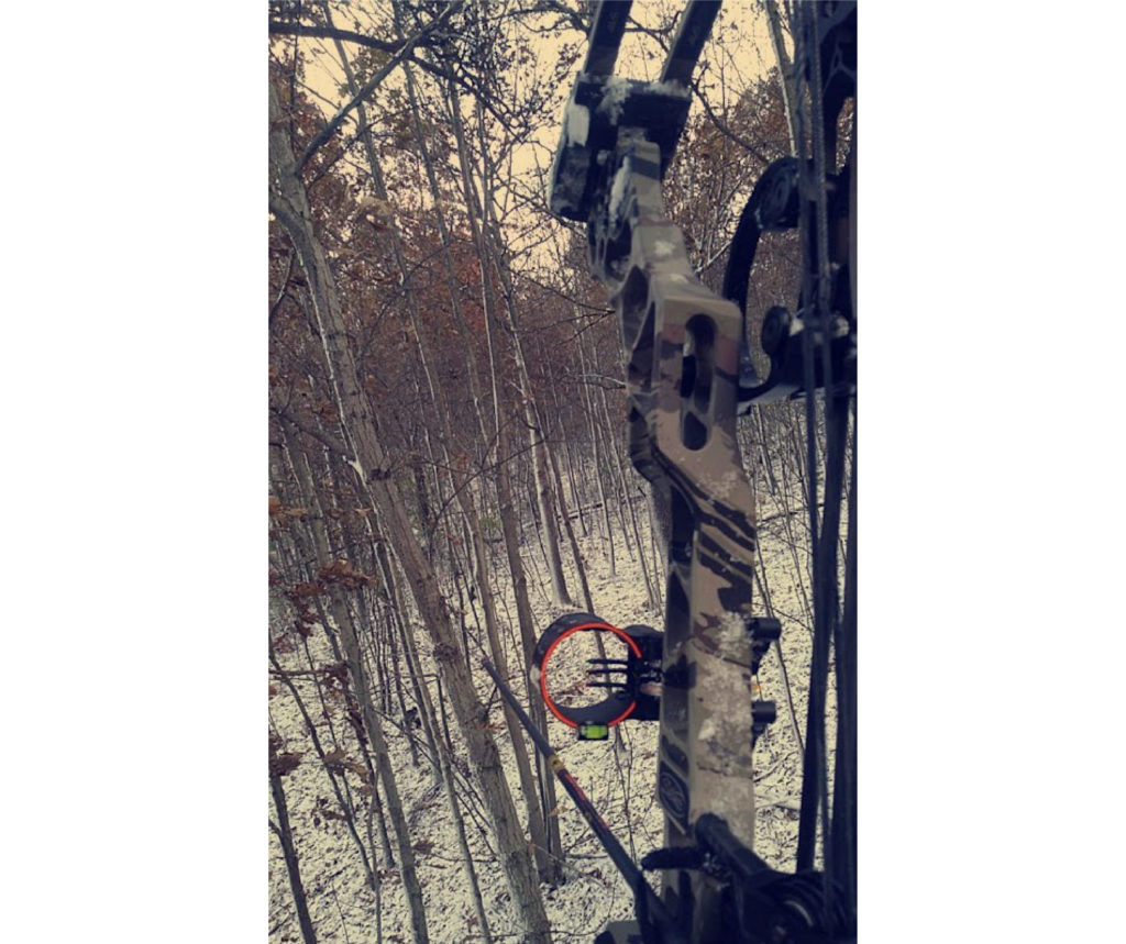 A archery bow is in the foreground. The picture was taken in a tree stand. Below are trees, and snow.